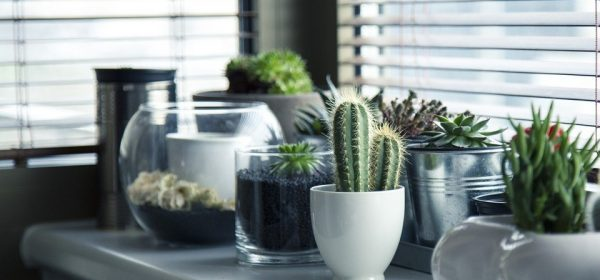 How to Style Your Living Room Using Pottery